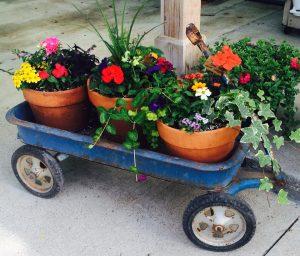 Wagon of pots Nicks Greenhouse