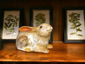 Bunny Nicks Greenhouse