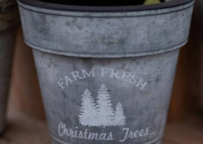 Farm-Fresh-bucket