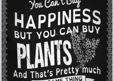 happiness with plants_nicksgreenhouse