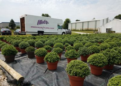nicks-truck-with-mums